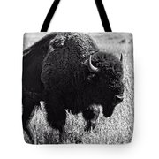 Crossing The Land Tote Bag