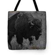 Crossing The Plains Tote Bag