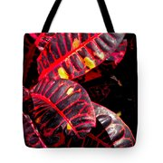 Croton Leaves In Black And Red Tote Bag