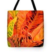 Croton's Many Colors Tote Bag