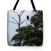 Crow - Black  Bird - Loud Call Tote Bag