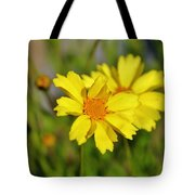 Crown Daisies  Tote Bag