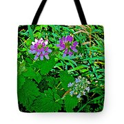 Crown Vetch And Catnip In Pipestone National Monument-minnesota Tote Bag