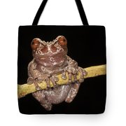 Crowned Frog Costa Rica Tote Bag