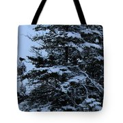 Crows Perch - Snowstorm - Snow - Tree Tote Bag