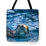 Cruisin Tote Bag by Douglas Barnard