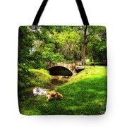 Cruz At Deer Creek Bridge Dwight Il Tote Bag