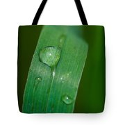 Crying Grass - Featured 2 Tote Bag
