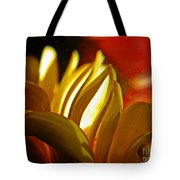 Crystal Ball Project 105 Tote Bag