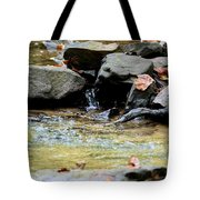 Crystal Clear Waters Of Hurricane Branch Tote Bag