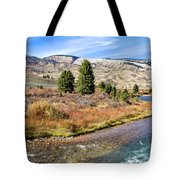 Crystal Creek In The Gros Ventre Tote Bag