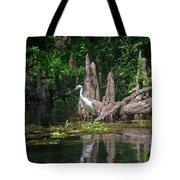 Crystal River Egret Tote Bag by Skip Willits