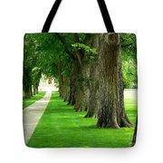Csu Tree Path Tote Bag