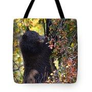 Cub Watch Tote Bag