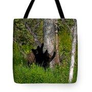 Cubs Tote Bag
