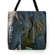 Cuddles In Search Tote Bag