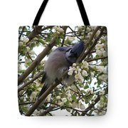 Cuddling The Blossoms Tote Bag