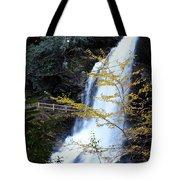 Cullasaja's Dry Falls Tote Bag