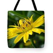 Cup Flower Tote Bag