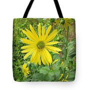 Cup Plant Blooms Tote Bag