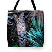 Curious Bobcat Tote Bag