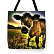 Curious Calf Dark Tote Bag