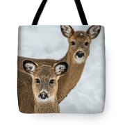 Curious Does Tote Bag