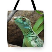 Curious Gaze Tote Bag