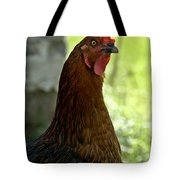 Curious Hen Tote Bag