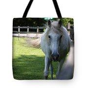 Curious Horse Tote Bag