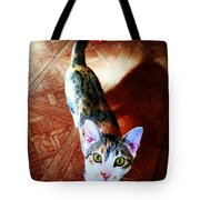 Curious Kitty Tote Bag