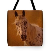Curious Pony With Spots Tote Bag