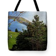 Curious Sheep In A Grassy Meadow Tote Bag