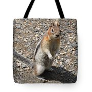 Curious Visitor Tote Bag