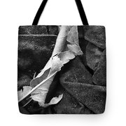Curled Up For The Winter Tote Bag