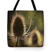 Curly And Spiky. Tote Bag