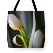Curly And White Tote Bag