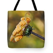 Curly Unfurling Daisy Tote Bag