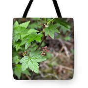 Currant Flower Tote Bag