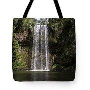 Curtain Falls Tote Bag
