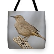Curved Bill On Cactus Rib Tote Bag