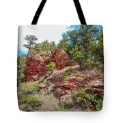 Custer State Park Ecology Tote Bag