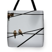 Cut-throat Wires Tote Bag