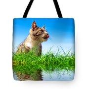 Cute Cat Outdoor Portait Tote Bag