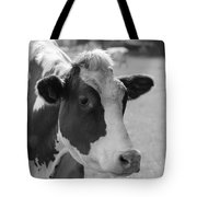 Cute Cow - Black And White Tote Bag