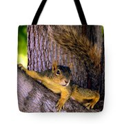 Cute Fuzzy Squirrel In Tree Near Garden Tote Bag