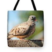 Cute Inca Dove Tote Bag by Robert Bales