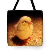 Cute Little Chick Tote Bag