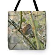 Cute Little Thrush Tote Bag