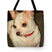 Cute N Sassy Tote Bag